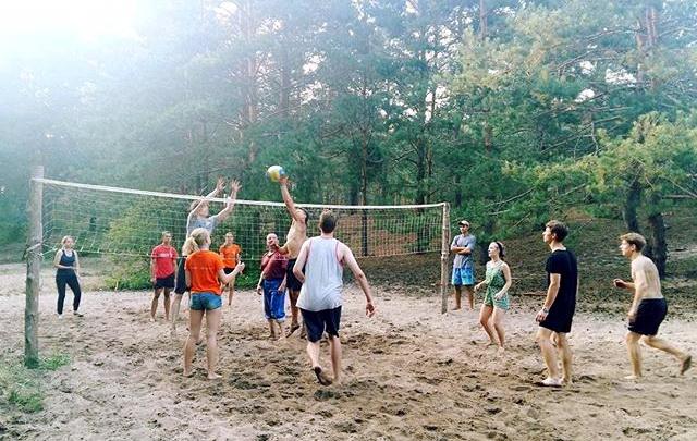 бобр-волейбол